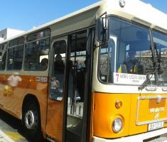 autobus Pile